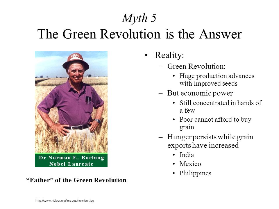 Myth 5 The Green Revolution is the Answer Reality: –Green Revolution: Huge production advances with improved seeds –But economic power Still concentrated in hands of a few Poor cannot afford to buy grain –Hunger persists while grain exports have increased India Mexico Philippines http://www.nbipsr.org/images/normbor.jpg Father of the Green Revolution