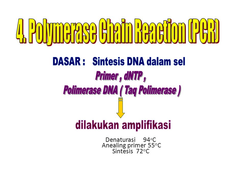 Denaturasi 94 o C Anealing primer 55 o C Sintesis 72 o C