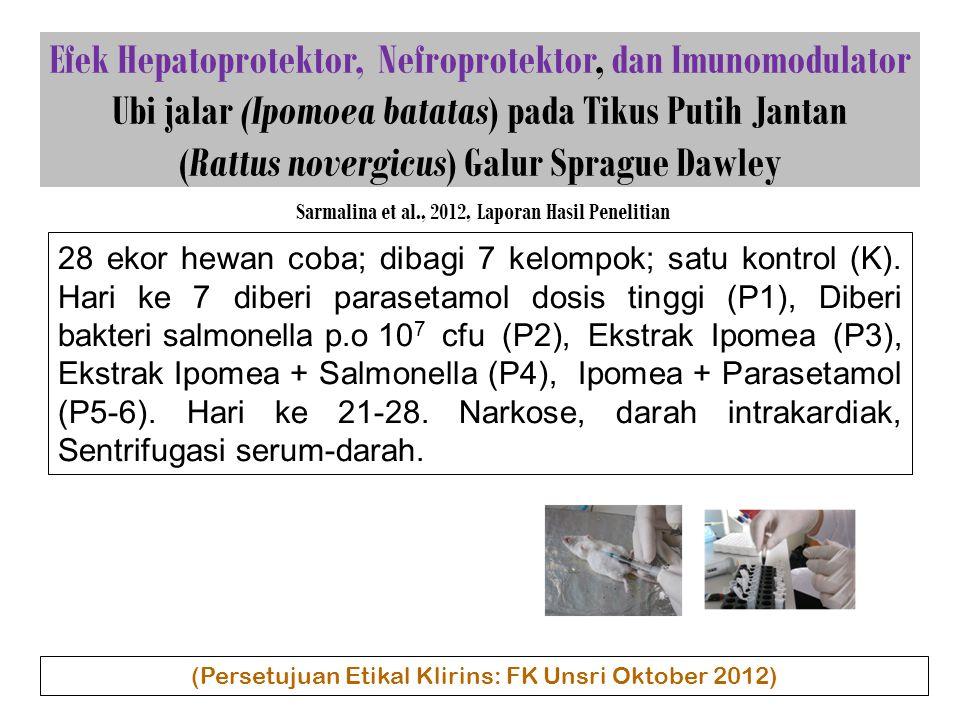 Efek Hepatoprotektor, Nefroprotektor, dan Imunomodulator Ubi jalar (Ipomoea batatas) pada Tikus Putih Jantan (Rattus novergicus) Galur Sprague Dawley Sarmalina et al., 2012, Laporan Hasil Penelitian 28 ekor hewan coba; dibagi 7 kelompok; satu kontrol (K).