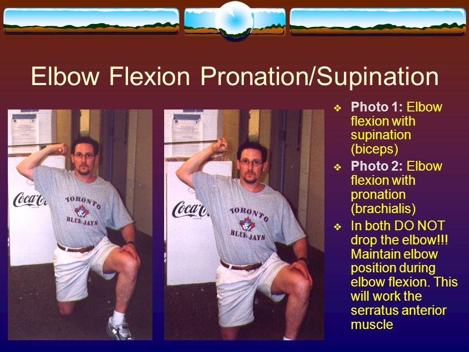 Elbow Flexion Pronation/Supination  Photo 1: Elbow flexion with supination (biceps)  Photo 2: Elbow flexion with pronation (brachialis)  In both DO