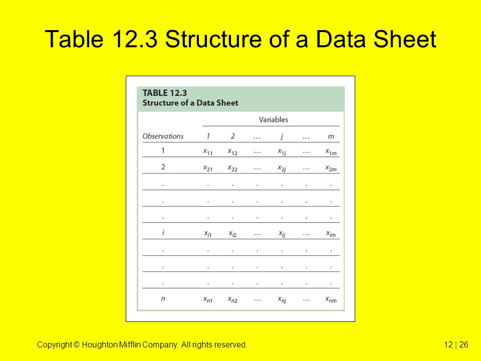 Copyright © Houghton Mifflin Company. All rights reserved.12 | 26 Table 12.3 Structure of a Data Sheet