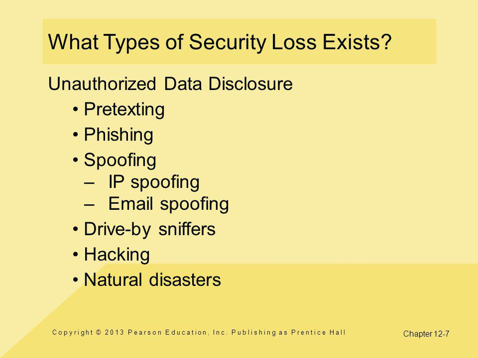 Chapter 12-7 What Types of Security Loss Exists.