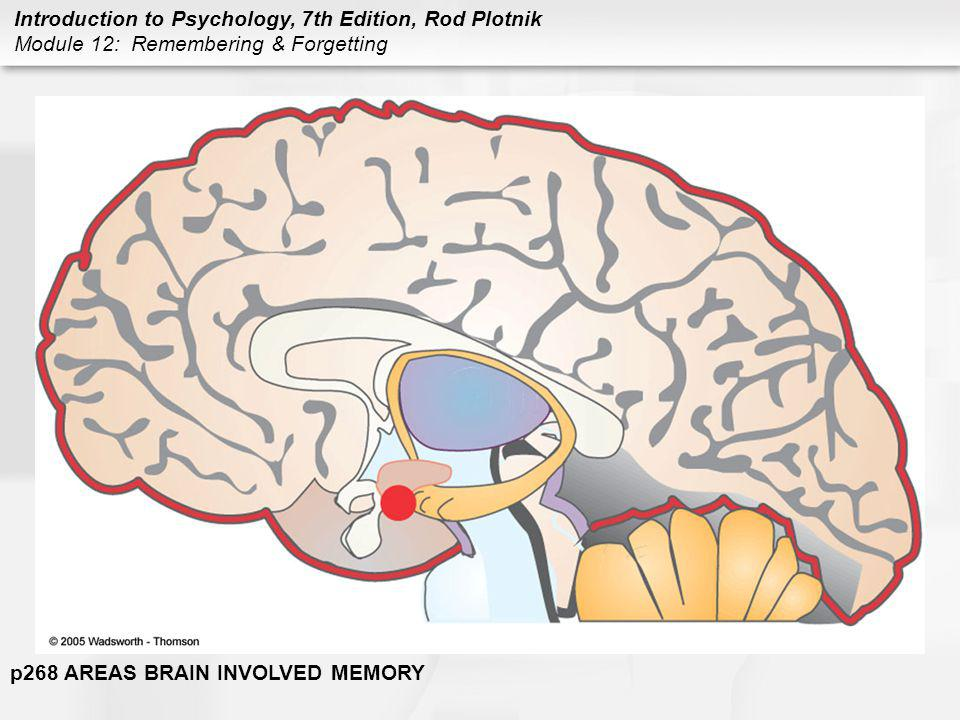 Introduction to Psychology, 7th Edition, Rod Plotnik Module 12: Remembering & Forgetting p268 AREAS BRAIN INVOLVED MEMORY