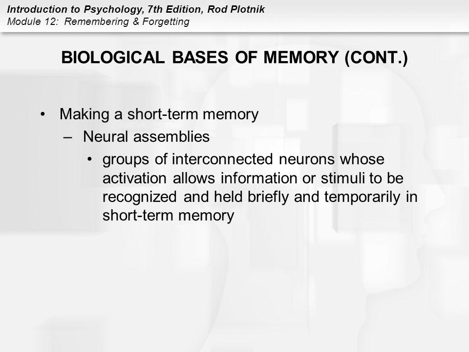 Introduction to Psychology, 7th Edition, Rod Plotnik Module 12: Remembering & Forgetting BIOLOGICAL BASES OF MEMORY (CONT.) Making a short-term memory