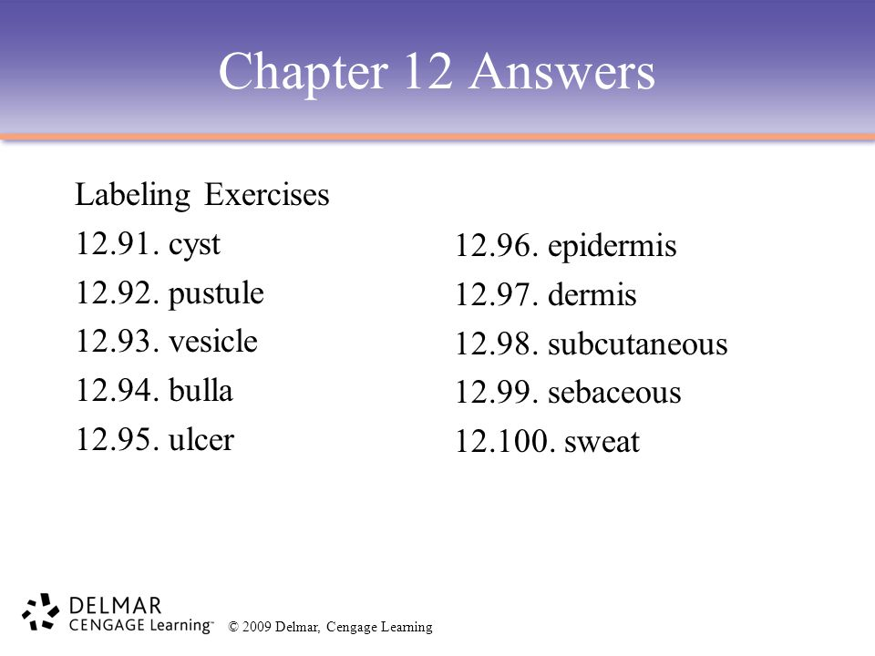 © 2009 Delmar, Cengage Learning Chapter 12 Answers Labeling Exercises 12.91. cyst 12.92. pustule 12.93. vesicle 12.94. bulla 12.95. ulcer 12.96. epide