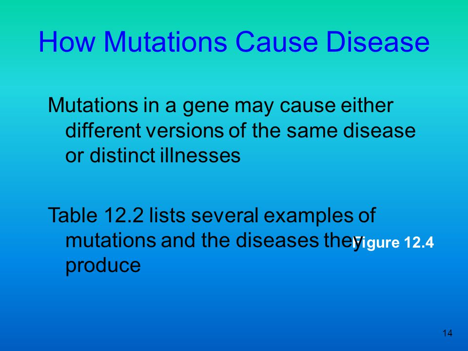 14 Figure 12.4 How Mutations Cause Disease Mutations in a gene may cause either different versions of the same disease or distinct illnesses Table 12.