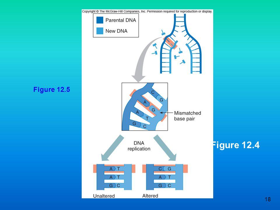 18 Figure 12.4 Figure 12.5