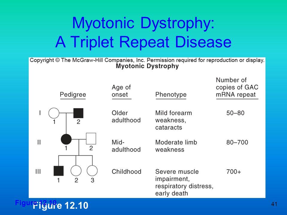 41 Myotonic Dystrophy: A Triplet Repeat Disease Figure 12.10