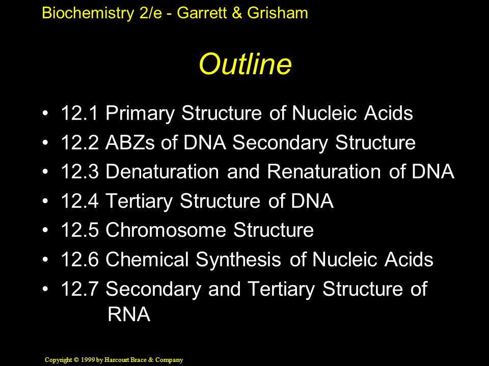 Biochemistry 2/e - Garrett & Grisham Copyright © 1999 by Harcourt Brace & Company Outline 12.1 Primary Structure of Nucleic Acids 12.2 ABZs of DNA Secondary Structure 12.3 Denaturation and Renaturation of DNA 12.4 Tertiary Structure of DNA 12.5 Chromosome Structure 12.6 Chemical Synthesis of Nucleic Acids 12.7 Secondary and Tertiary Structure of RNA