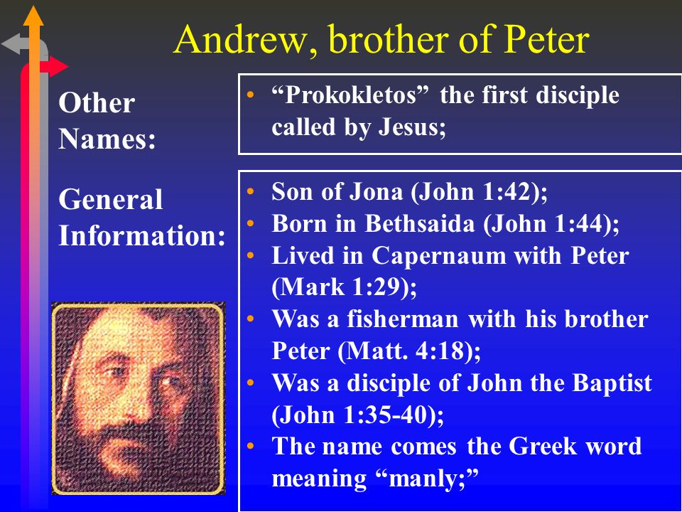 Andrew, brother of Peter General Information: Other Names: Prokokletos the first disciple called by Jesus; Son of Jona (John 1:42); Born in Bethsaida (John 1:44); Lived in Capernaum with Peter (Mark 1:29); Was a fisherman with his brother Peter (Matt.