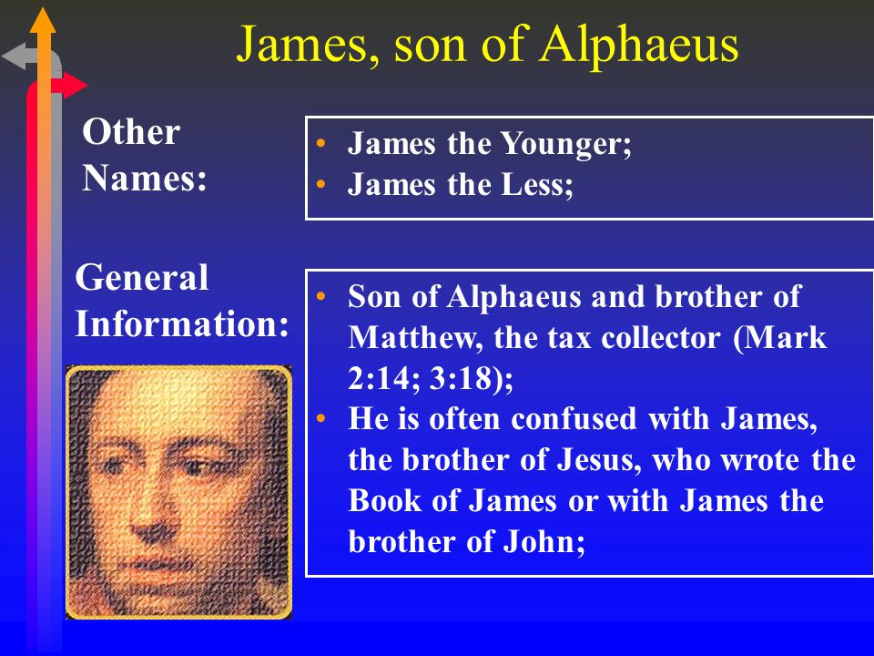 James, son of Alphaeus General Information: Other Names: James the Younger; James the Less; Son of Alphaeus and brother of Matthew, the tax collector (Mark 2:14; 3:18); He is often confused with James, the brother of Jesus, who wrote the Book of James or with James the brother of John;