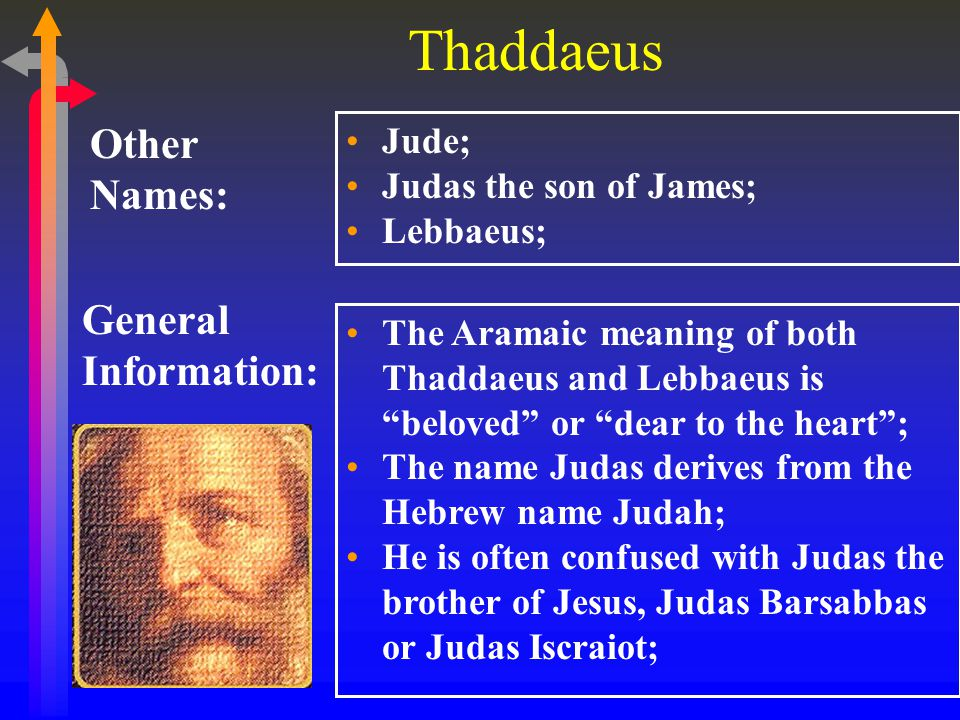 Thaddaeus General Information: Other Names: Jude; Judas the son of James; Lebbaeus; The Aramaic meaning of both Thaddaeus and Lebbaeus is beloved or dear to the heart ; The name Judas derives from the Hebrew name Judah; He is often confused with Judas the brother of Jesus, Judas Barsabbas or Judas Iscraiot;