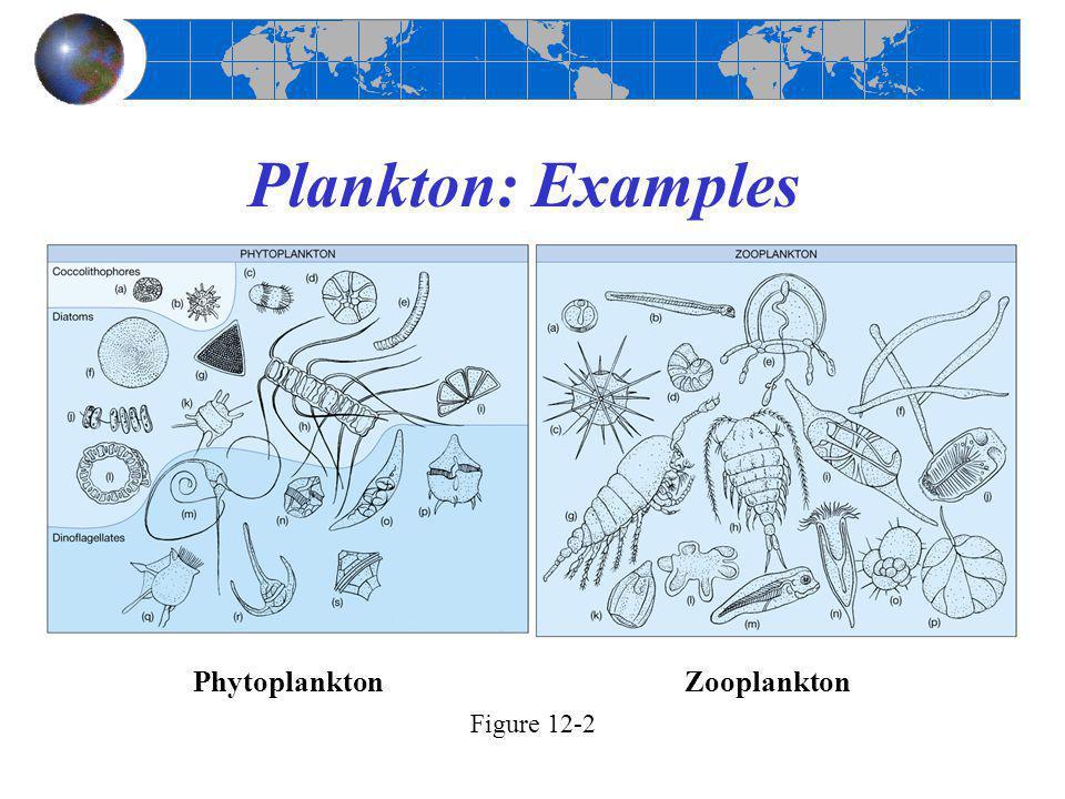 Plankton: Examples Figure 12-2 PhytoplanktonZooplankton