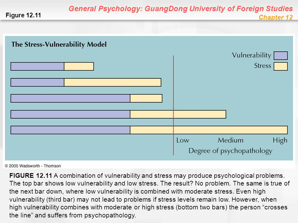 General Psychology: GuangDong University of Foreign Studies Chapter 12 Figure 12.11 FIGURE 12.11 A combination of vulnerability and stress may produce
