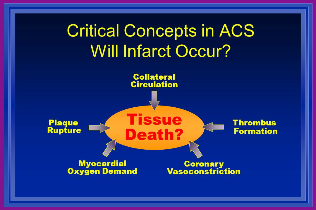 Critical Concepts in ACS Will Infarct Occur? Tissue Death? Plaque Rupture Thrombus Formation Coronary Vasoconstriction Collateral Circulation Myocardi