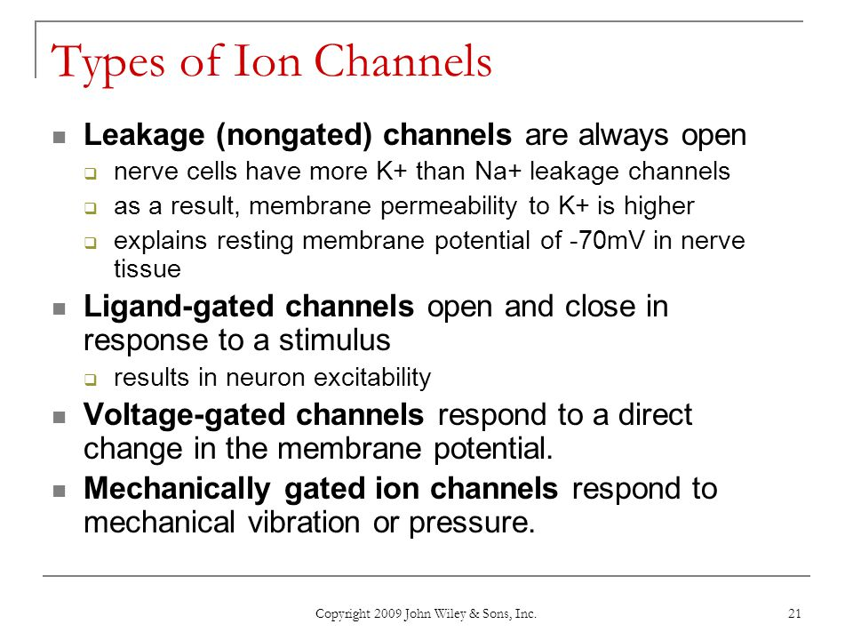 Copyright 2009 John Wiley & Sons, Inc. 21 Types of Ion Channels Leakage (nongated) channels are always open  nerve cells have more K+ than Na+ leakag