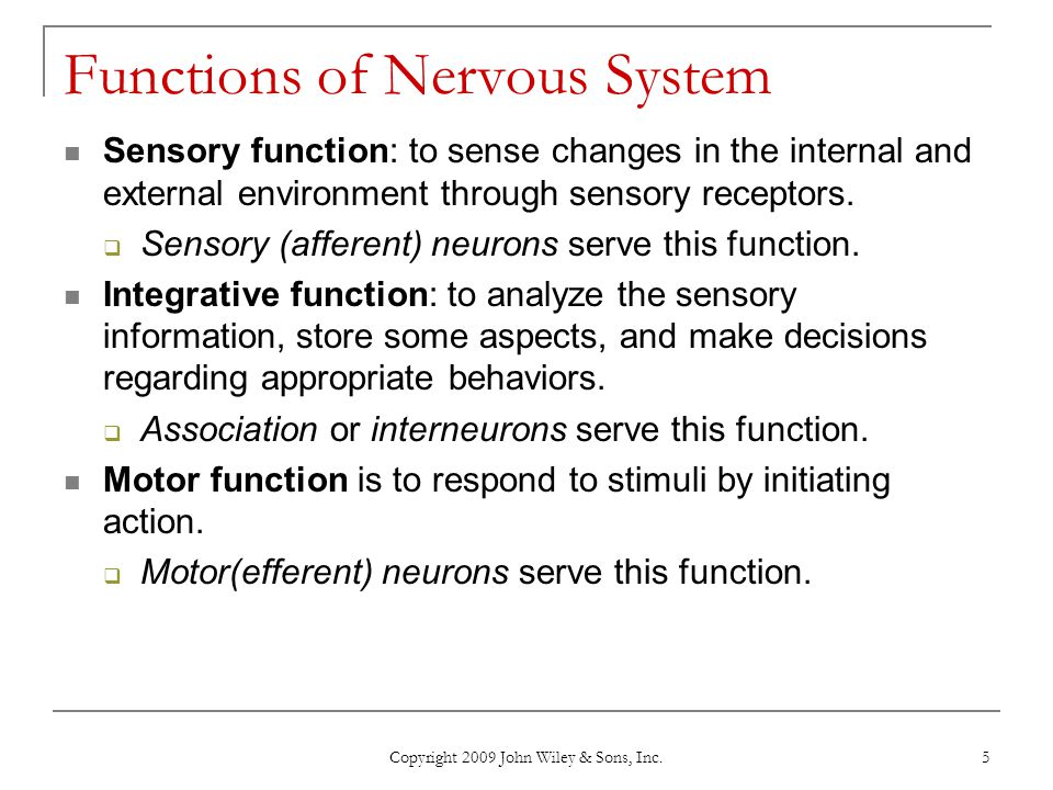 Copyright 2009 John Wiley & Sons, Inc. 5 Functions of Nervous System Sensory function: to sense changes in the internal and external environment throu