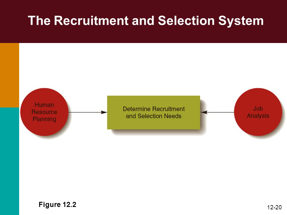 12-20 The Recruitment and Selection System Figure 12.2