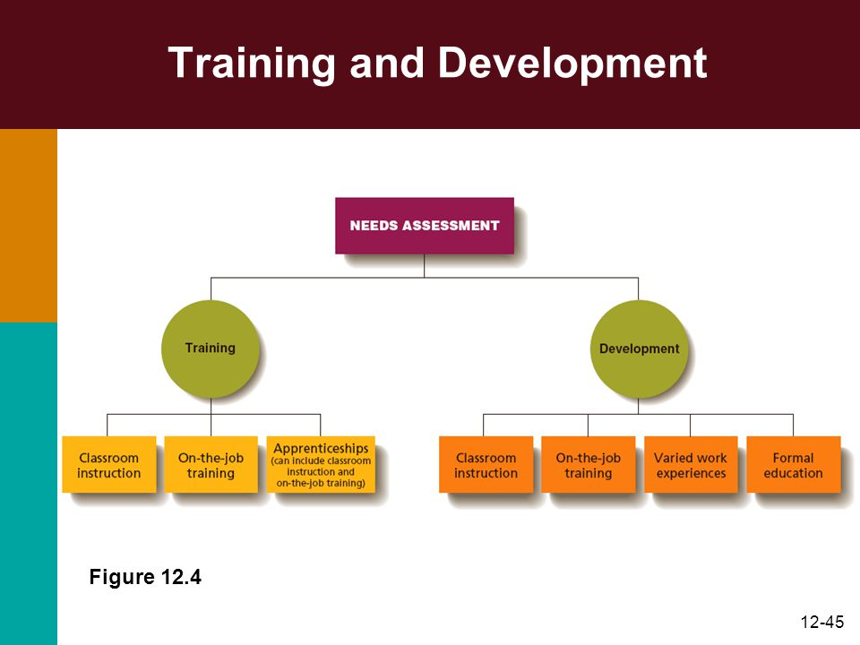 12-45 Training and Development Figure 12.4