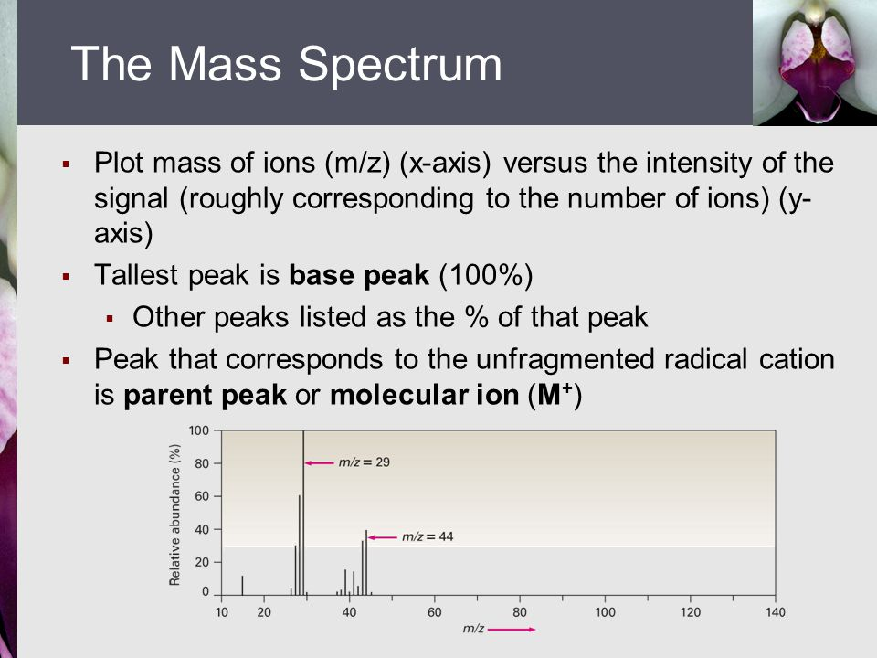  Plot mass of ions (m/z) (x-axis) versus the intensity of the signal (roughly corresponding to the number of ions) (y- axis)  Tallest peak is base p