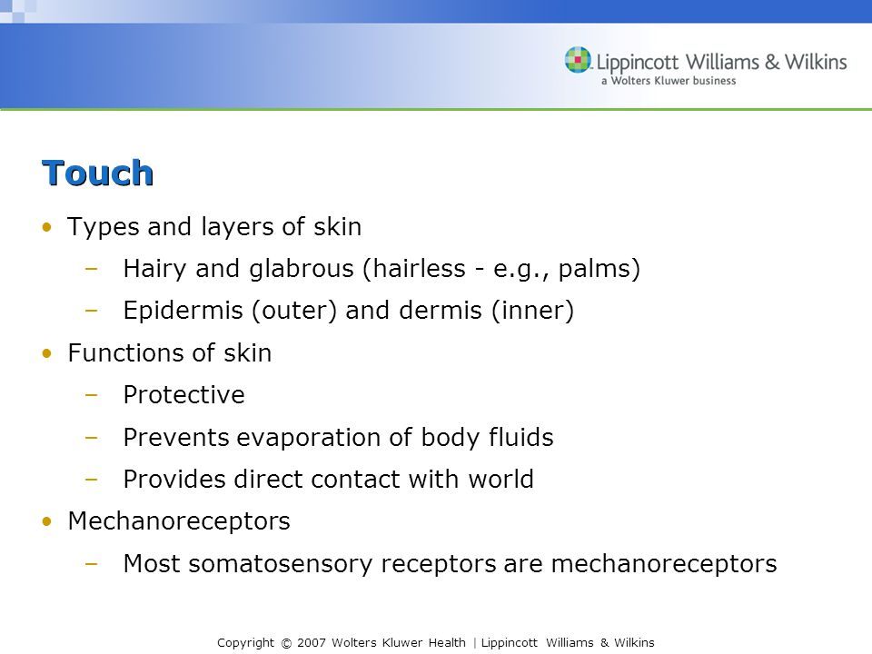 Copyright © 2007 Wolters Kluwer Health | Lippincott Williams & Wilkins Touch Types and layers of skin –Hairy and glabrous (hairless - e.g., palms) –Epidermis (outer) and dermis (inner) Functions of skin –Protective –Prevents evaporation of body fluids –Provides direct contact with world Mechanoreceptors –Most somatosensory receptors are mechanoreceptors