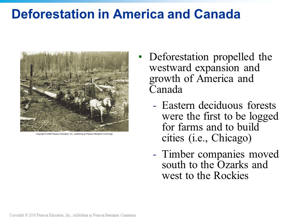 Copyright © 2008 Pearson Education, Inc., publishing as Pearson Benjamin Cummings Deforestation in America and Canada Deforestation propelled the westward expansion and growth of America and Canada -Eastern deciduous forests were the first to be logged for farms and to build cities (i.e., Chicago) -Timber companies moved south to the Ozarks and west to the Rockies