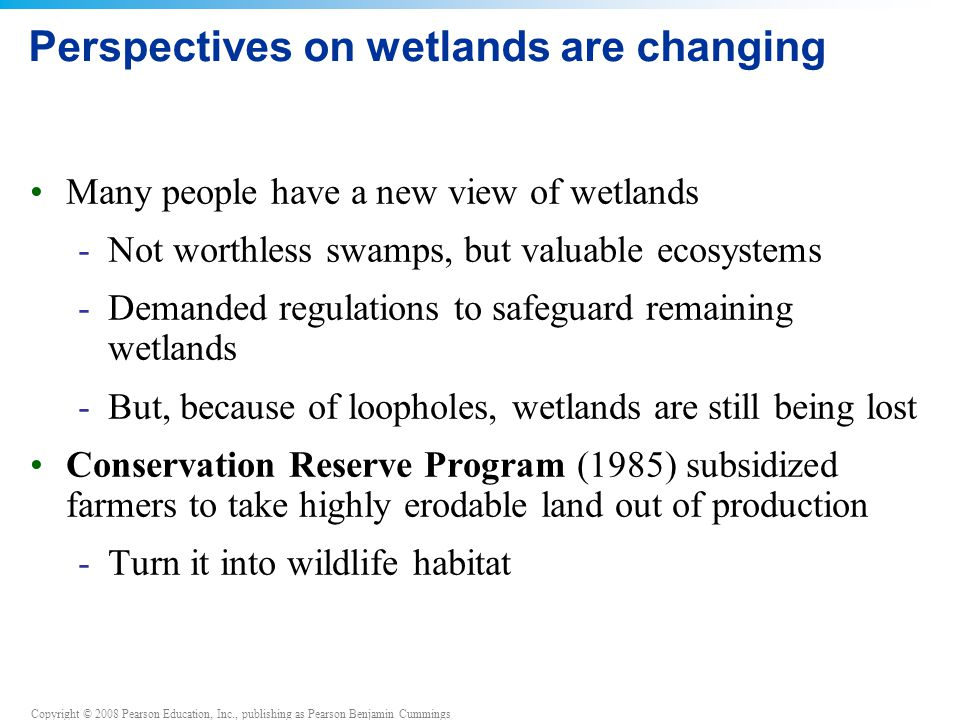 Copyright © 2008 Pearson Education, Inc., publishing as Pearson Benjamin Cummings Perspectives on wetlands are changing Many people have a new view of wetlands -Not worthless swamps, but valuable ecosystems -Demanded regulations to safeguard remaining wetlands -But, because of loopholes, wetlands are still being lost Conservation Reserve Program (1985) subsidized farmers to take highly erodable land out of production -Turn it into wildlife habitat
