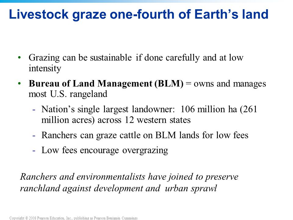 Copyright © 2008 Pearson Education, Inc., publishing as Pearson Benjamin Cummings Livestock graze one-fourth of Earth's land Grazing can be sustainable if done carefully and at low intensity Bureau of Land Management (BLM) = owns and manages most U.S.