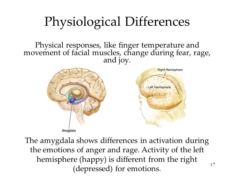 17 Physiological Differences Physical responses, like finger temperature and movement of facial muscles, change during fear, rage, and joy. The amygda