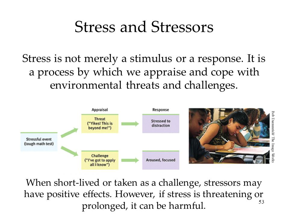 53 Stress and Stressors Stress is not merely a stimulus or a response. It is a process by which we appraise and cope with environmental threats and ch