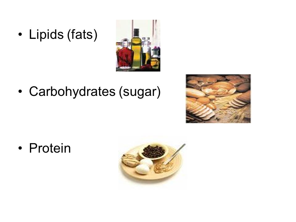 CATABOLISM OF FOOD