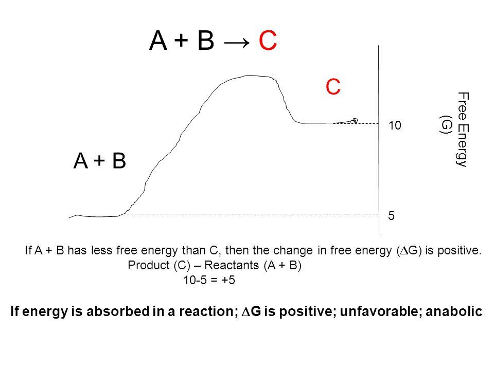A + B → C C A + B Free Energy (G) 5 10 If A + B has less free energy than C, then the change in free energy (  G) is positive. Product (C) – Reactant