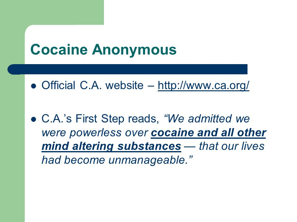 Cocaine Anonymous Official C.A.