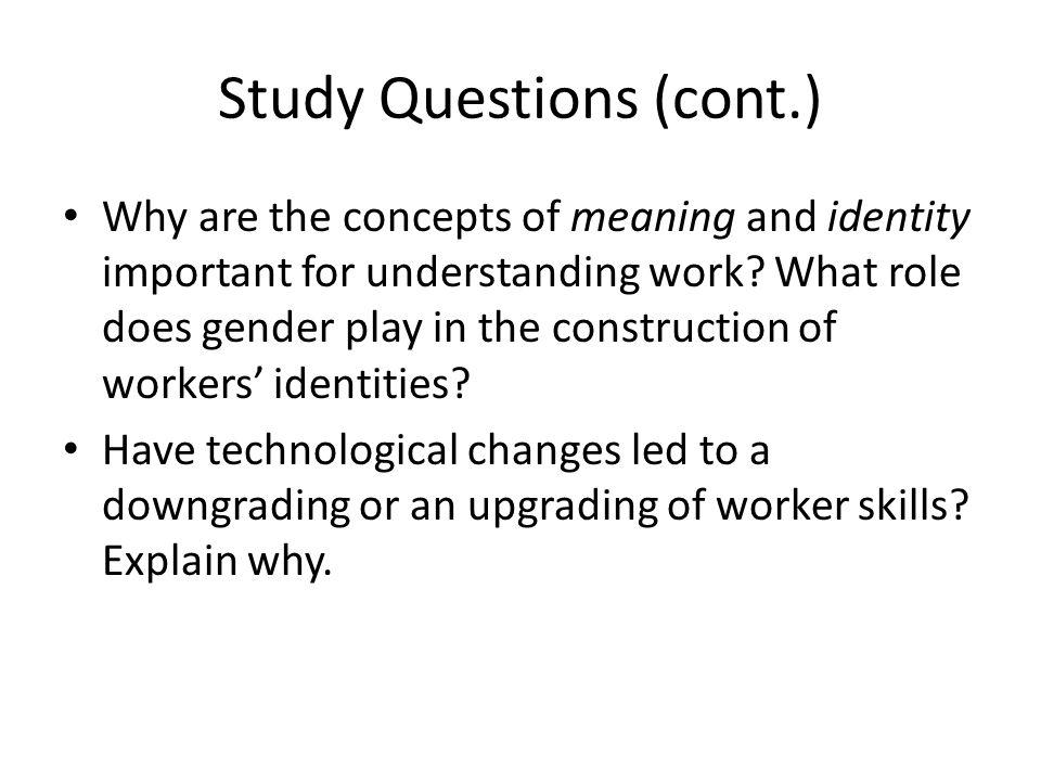 Study Questions (cont.) Why are the concepts of meaning and identity important for understanding work.