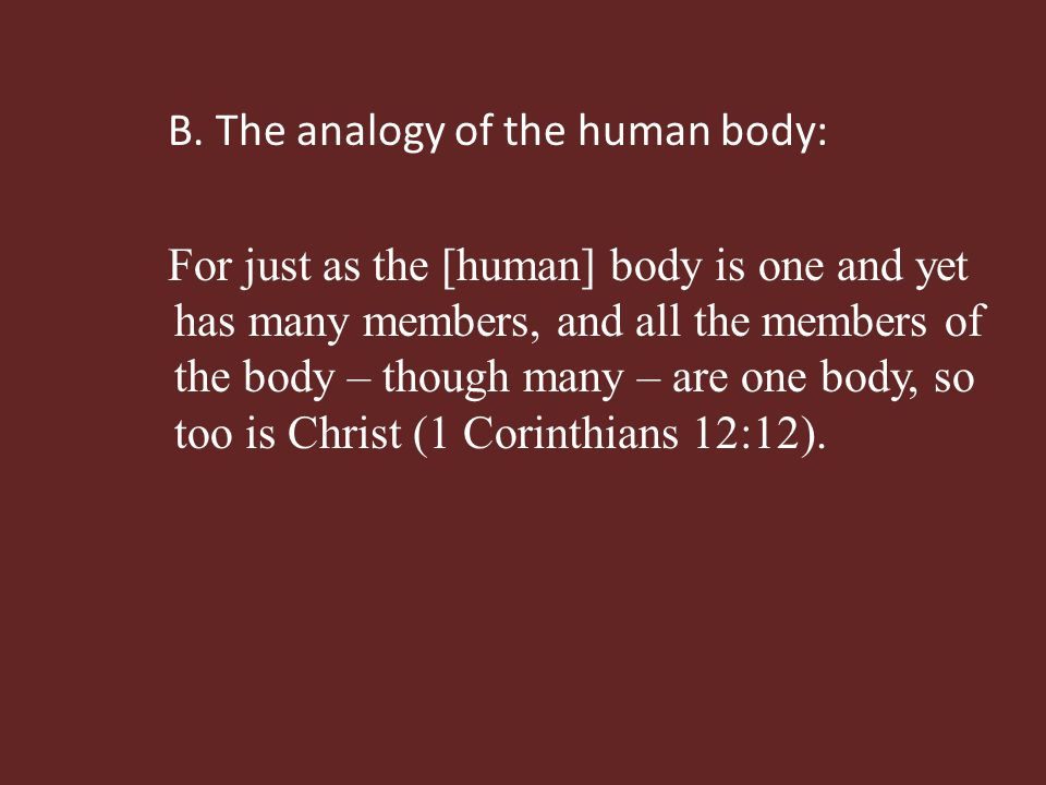 B. The analogy of the human body: For just as the [human] body is one and yet has many members, and all the members of the body – though many – are on