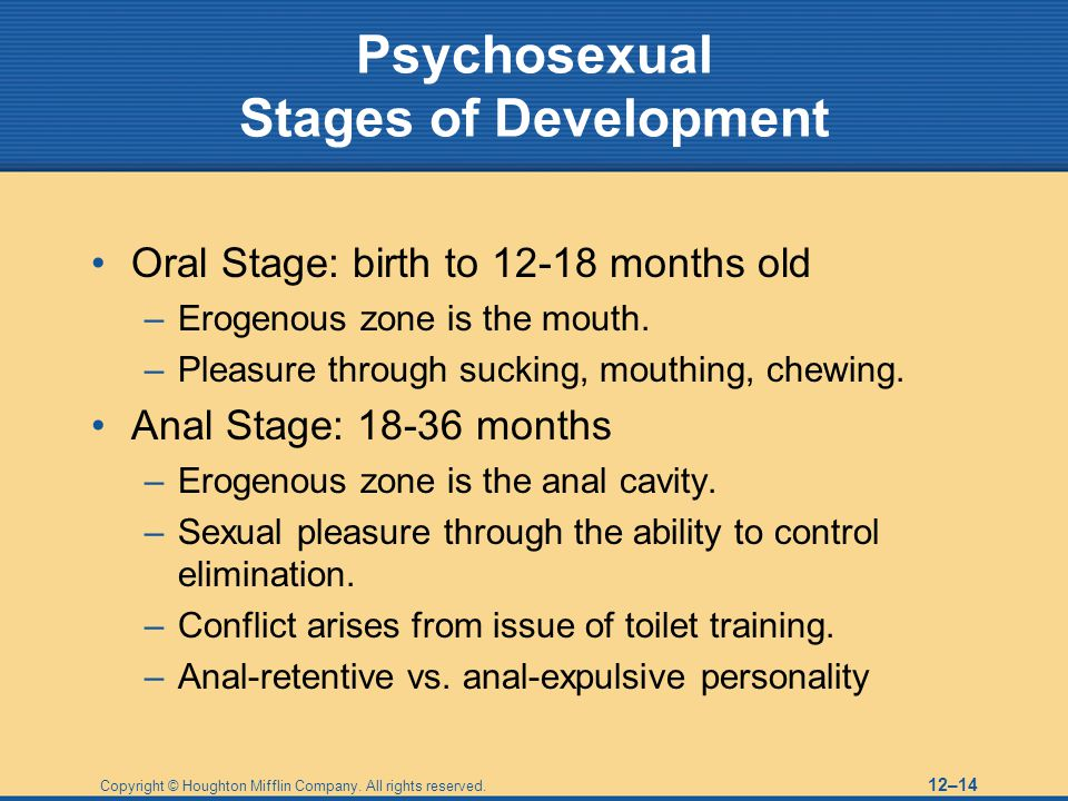 Copyright © Houghton Mifflin Company. All rights reserved. 12–14 Psychosexual Stages of Development Oral Stage: birth to 12-18 months old –Erogenous z
