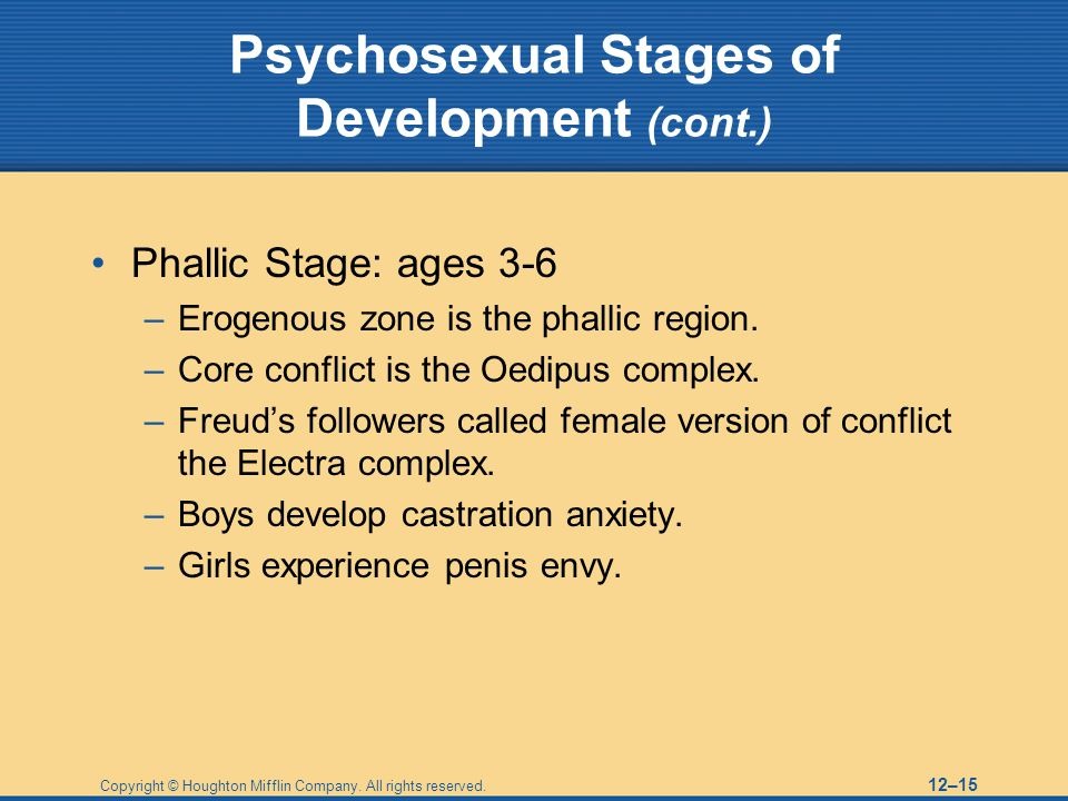 Copyright © Houghton Mifflin Company. All rights reserved. 12–15 Psychosexual Stages of Development (cont.) Phallic Stage: ages 3-6 –Erogenous zone is