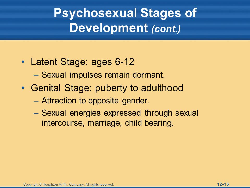 Copyright © Houghton Mifflin Company. All rights reserved. 12–16 Psychosexual Stages of Development (cont.) Latent Stage: ages 6-12 –Sexual impulses r