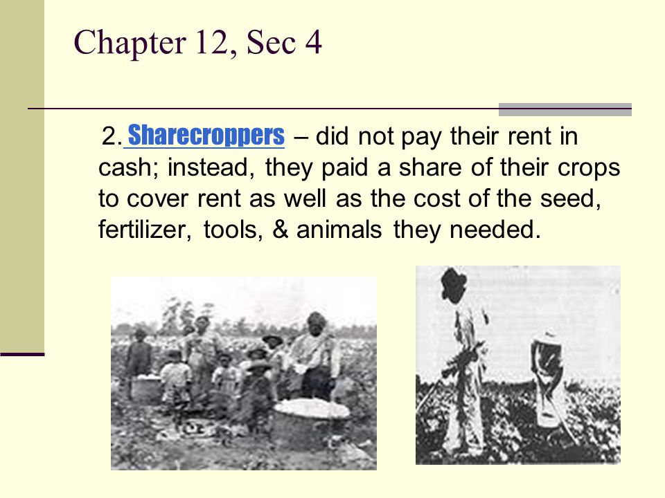 Chapter 12, Sec 4 2. Sharecroppers – did not pay their rent in cash; instead, they paid a share of their crops to cover rent as well as the cost of th