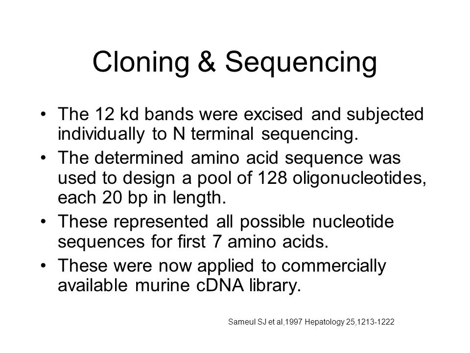 Cloning & Sequencing The 12 kd bands were excised and subjected individually to N terminal sequencing.