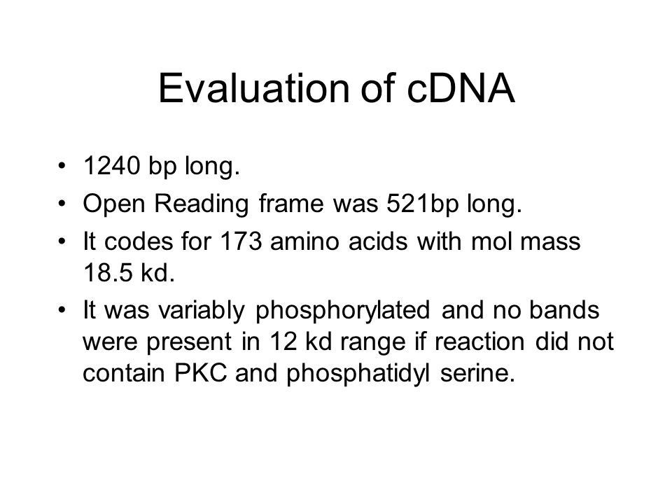 Evaluation of cDNA 1240 bp long. Open Reading frame was 521bp long.