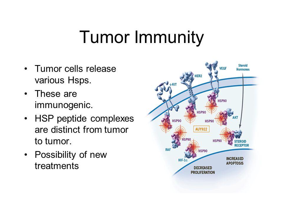 Tumor Immunity Tumor cells release various Hsps. These are immunogenic.