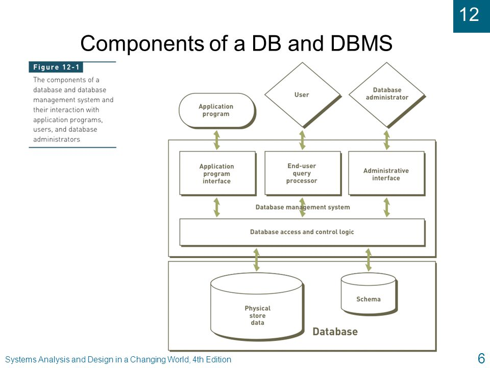 12 Systems Analysis and Design in a Changing World, 4th Edition 6 Components of a DB and DBMS