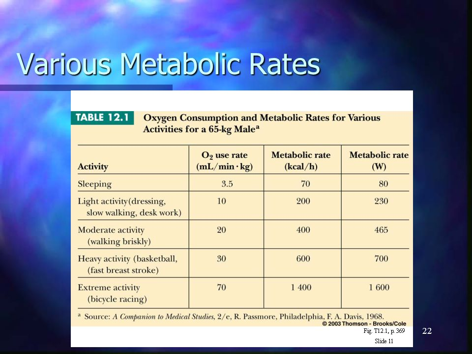 22 Various Metabolic Rates