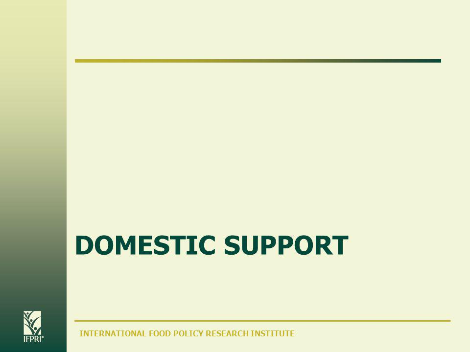 INTERNATIONAL FOOD POLICY RESEARCH INSTITUTE DOMESTIC SUPPORT
