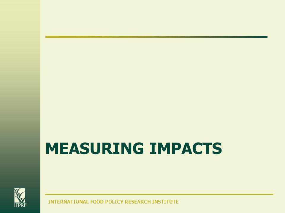 INTERNATIONAL FOOD POLICY RESEARCH INSTITUTE MEASURING IMPACTS