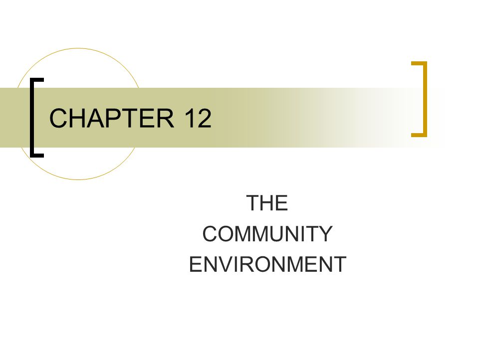 CHAPTER 12 THE COMMUNITY ENVIRONMENT