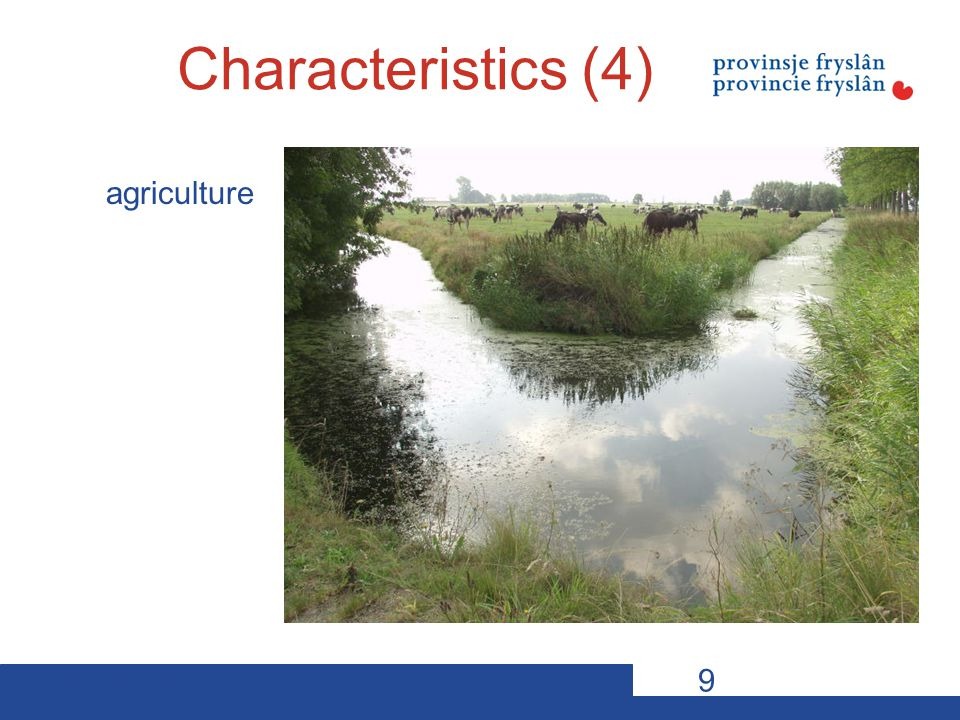 10-11-12VDP s20 The new rural policy 2012 - 2017 Two mainstreams The targetpoints