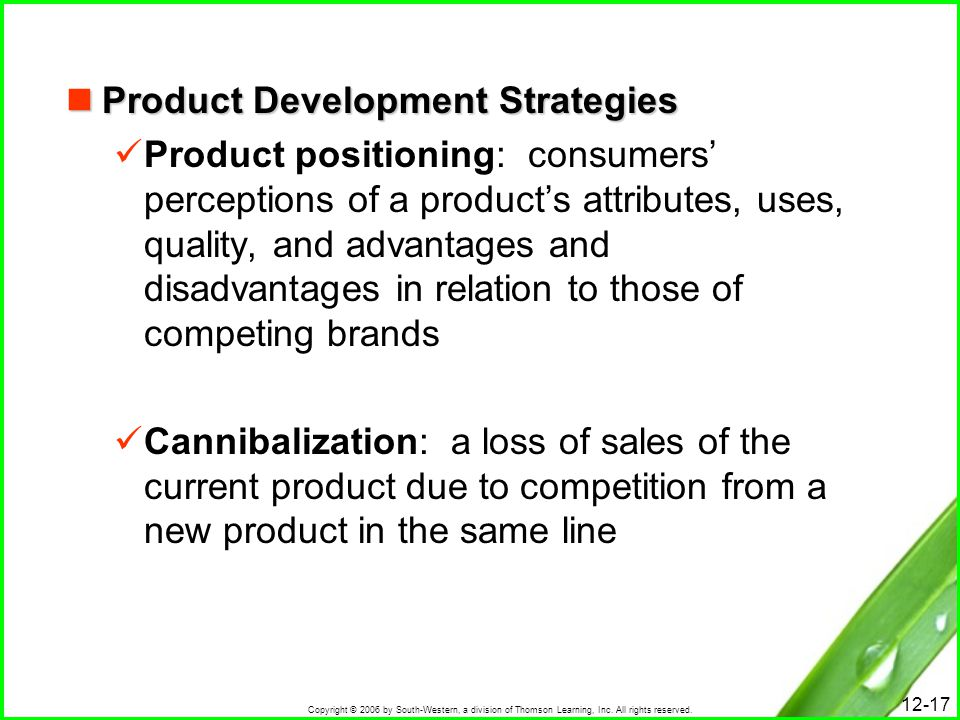 Copyright © 2006 by South-Western, a division of Thomson Learning, Inc. All rights reserved. 12-17 Product Development Strategies Product Development