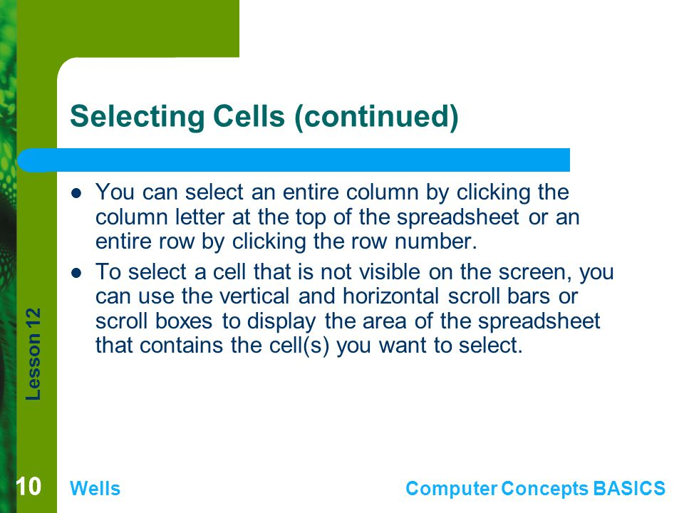 Lesson 12 WellsComputer Concepts BASICS 10 Selecting Cells (continued) You can select an entire column by clicking the column letter at the top of the
